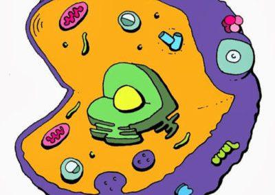 FutureNeuro joins Cell EXPLORERS